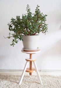 plant rack