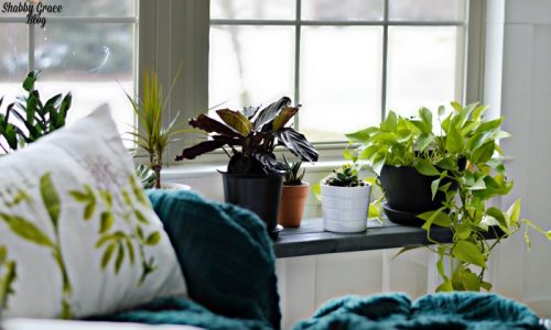 DIY Plant Stand Ideas for Indoor and Outdoor Decoration [A Complete List]