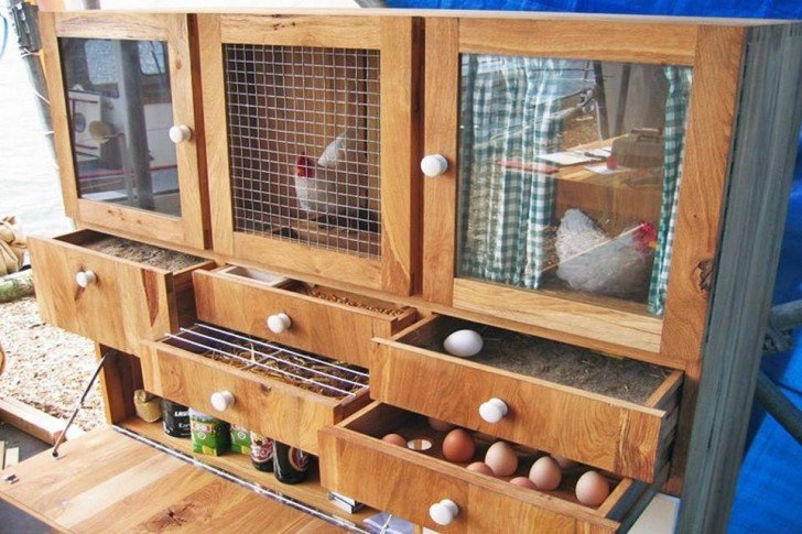 37+ Chicken Roosting Ideas For Your Chicken Coop