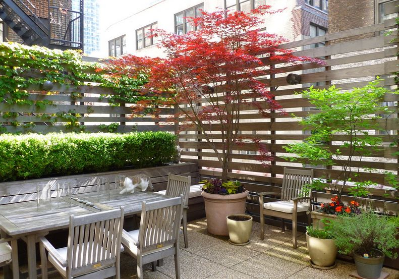 27 awesome diy outdoor privacy screen ideas with picture for Small outdoor privacy screen