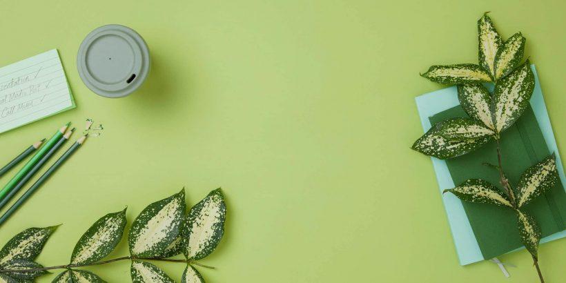Contact - Green Wallpaper
