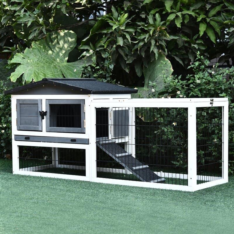 Build A Mini Pet Sanctuary