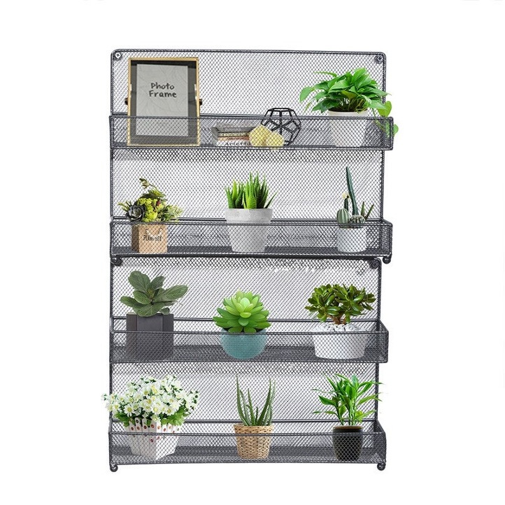 Spice it Up with a Succulent-Themed Spice Rack