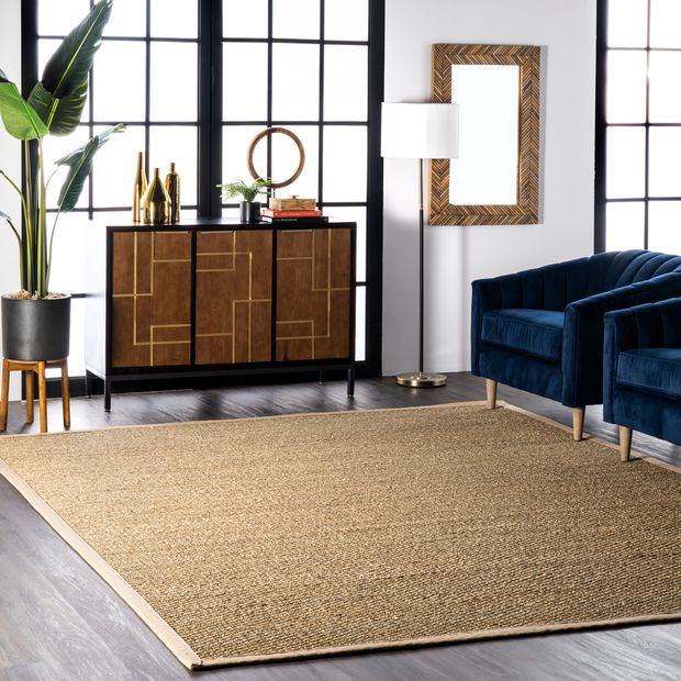 Beige Seagrass with Border Area Rug